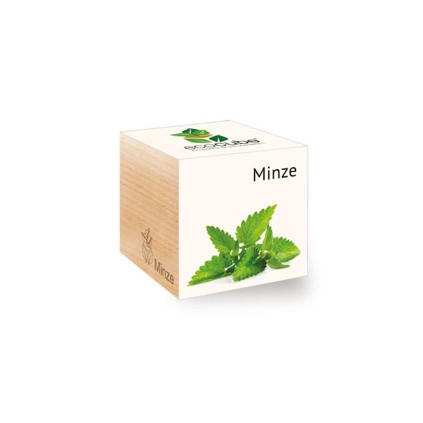 Ecocube - Minze