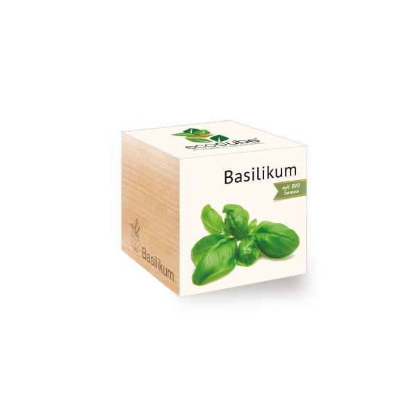 Ecocube - Basilikum